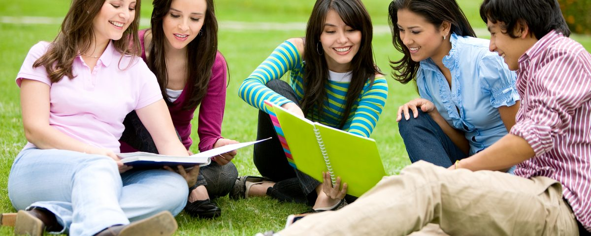 best assignment writing help in New Zealand